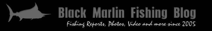 More marlin reports from down the coast
