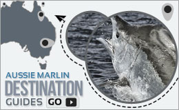 Marlin Destination Guide