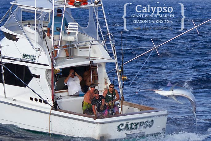 calypsohighflyer